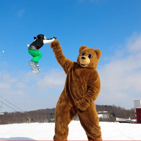 bc bear with snowboarder