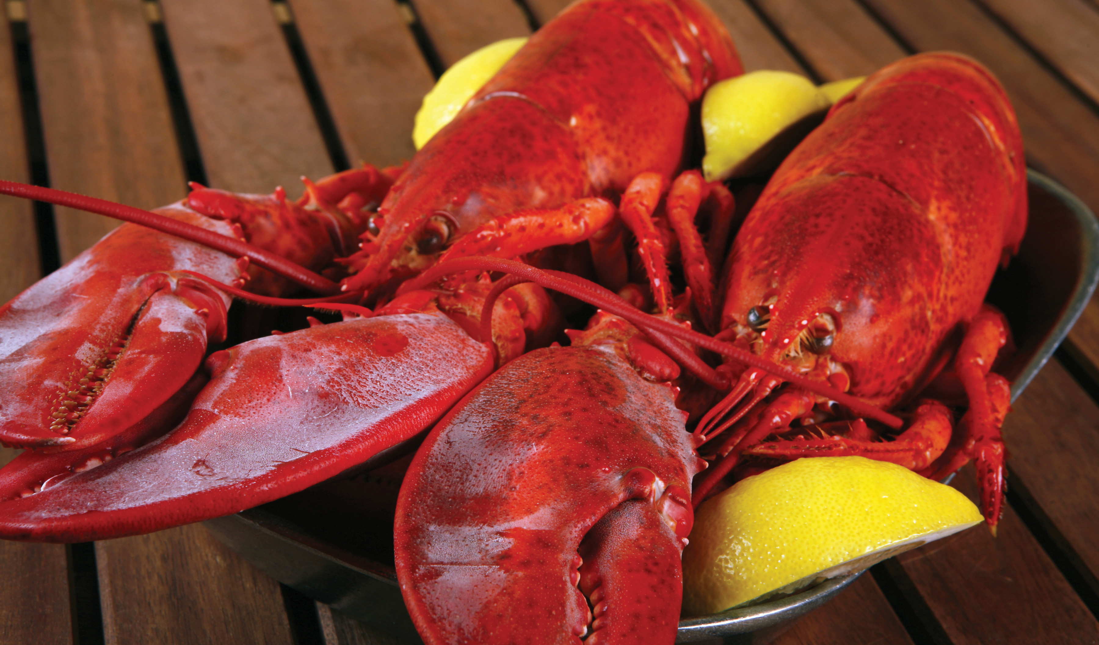 Lobster Week- June 20th-25th